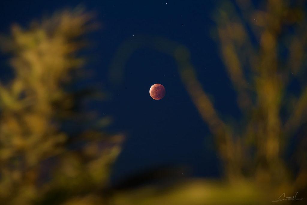 血月降臨,睽違三年的月全食(下篇) 山野百科 | 戶外研究站 月全食